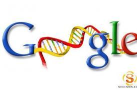 【谷歌SEO优化】Google工具条PR更新与排名变化的迷思