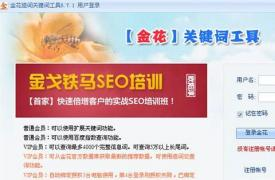 【SEO工具】seo金花关键词工具简介