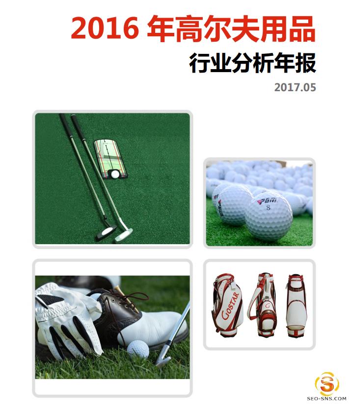 【行业分析报告】2016年高尔夫用品行业分析年报