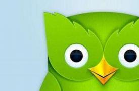 "【SEO知识】Google 谷歌""猫头鹰""算法更新"